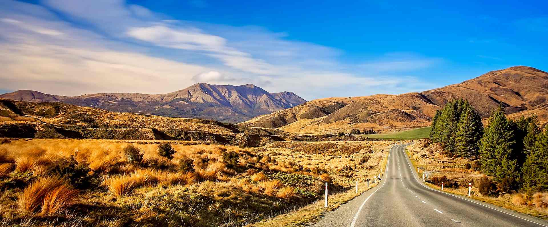 road-through-new-zealand